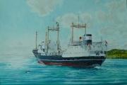 ms Trito van de Maatschappij Zeevaart varend aan de Ierse kust