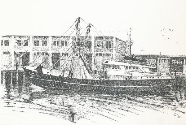 Cornelia Breskens 14