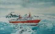 Cruiseschip in Antarctische wateren